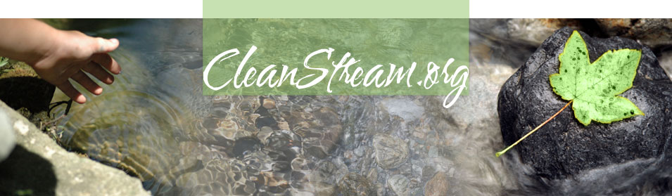CleanStream.org
